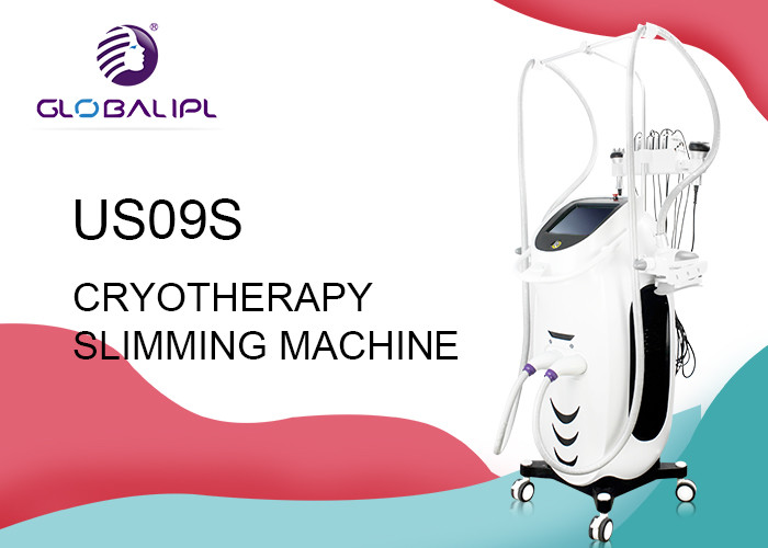 Vertical Cryolipo Fat Freezing Equipment Weight Loss Body Slimming 110V / 220V